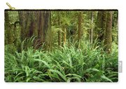 1a2912-ferns In Rain Forest Canada  Carry-all Pouch