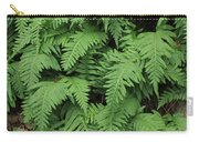 D3b6333-ferns In Sonoma 2  Carry-all Pouch