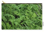 D3b6327-ferns In Sonoma Carry-all Pouch