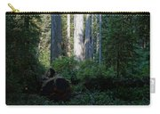 Ferns Of The Redwood Forest Carry-all Pouch