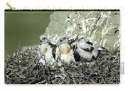Ferruginous Hawk Chicks In Nest Carry-all Pouch