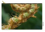 Fiddlehead Carry-all Pouch