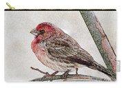 Finch Art Carry-all Pouch