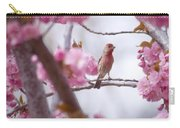 Finch Frame Carry-all Pouch