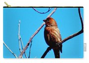 Finch On Branch 031015a Carry-all Pouch