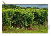 Finger Lakes Vineyard Carry-all Pouch by Frozen in Time Fine Art Photography