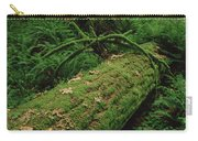 Fir Nurse Log In Rainforest Pacific Carry-all Pouch