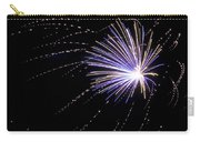 Fireworks 1 Carry-all Pouch by Sandy Swanson