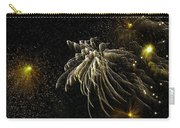 Fireworks As I See Them  Carry-all Pouch by F Leblanc