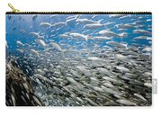 Fish Freeway Carry-all Pouch by Sean Davey