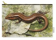Five-lined Skink Carry-all Pouch