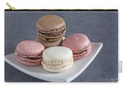 Five Macaroons Carry-all Pouch
