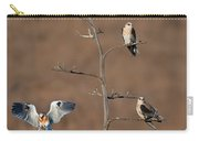 Five White-tailed Kite Siblings Carry-all Pouch