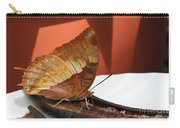 Flame-bordered Charaxes Butterfly #2 Carry-all Pouch
