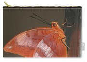 Flame-bordered Charaxes Butterfly #3 Carry-all Pouch