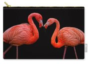 Flamenco ... Baby Carry-all Pouch