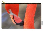 Flamingo Curves Carry-all Pouch