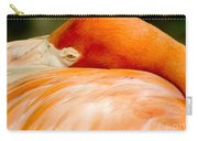 Flamingo Napping Carry-all Pouch