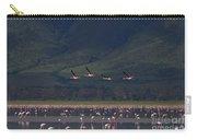 Flamingos  #6590 Carry-all Pouch