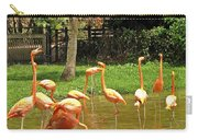 Flamingos Wading Carry-all Pouch