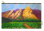 Flat Iron Colorado Carry-all Pouch