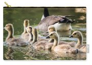 Floating Along The Pond Carry-all Pouch