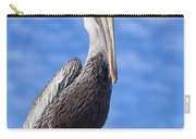 Florida Brown Pelican Carry-all Pouch by Kim Hojnacki