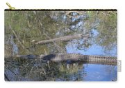 Florida Gators Carry-all Pouch