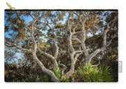 Florida Scrub Oaks Painted   Carry-all Pouch