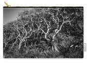 Florida Scrub Oaks Painted Bw  Carry-all Pouch