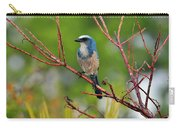 Florida Scrubjay Carry-all Pouch
