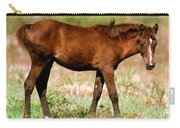 Florida Spanish Horse Carry-all Pouch