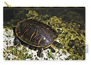 Florida Turtle Carry-all Pouch