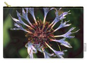 10415 Cornflower Carry-all Pouch