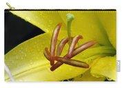 Flower Garden 28 Carry-all Pouch