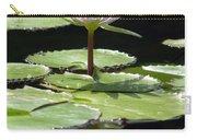 Flower Garden 62 Carry-all Pouch