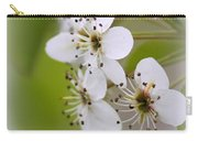 Flowers - Blossoms Carry-all Pouch
