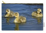 Fluffy Floaters  Carry-all Pouch