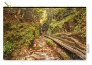 Flume Gorge Landscape Carry-all Pouch