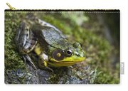 Fly Catcher Carry-all Pouch by Christina Rollo