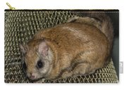 Flying Squirrel On The Feeder Carry-all Pouch