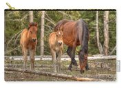 Foal Spot Carry-all Pouch