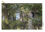 Forest Black Bear Cub Carry-all Pouch