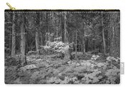 Forest Floor Glacier National Park Bw Carry-all Pouch