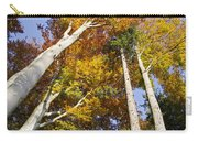 Forest In Autumn Bavaria Carry-all Pouch