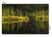 131005b-044 Forest Marsh 1 Carry-all Pouch
