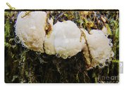 Forest Mushroom Trio Carry-all Pouch