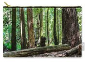 Forest Of Cathedral Grove Collection 2 Carry-all Pouch