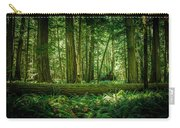 Forest Of Cathedral Grove Collection 7 Carry-all Pouch