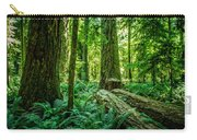 Forest Of Cathedral Grove Collection 8 Carry-all Pouch